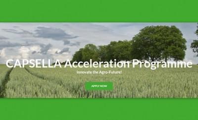 Capsella-Acceleration-Programme