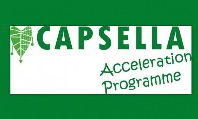 Capsella