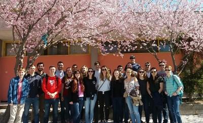 Worcester Polytechnic Institute-Perrotis College