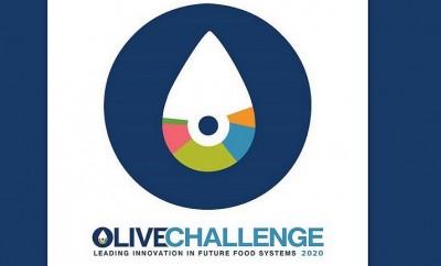OLIVE CHALLENGE
