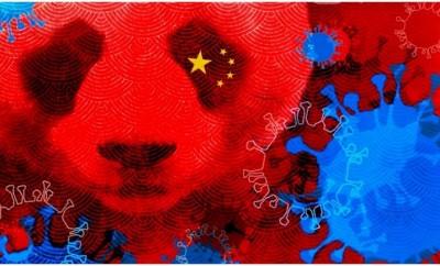China's Bat Virus Program
