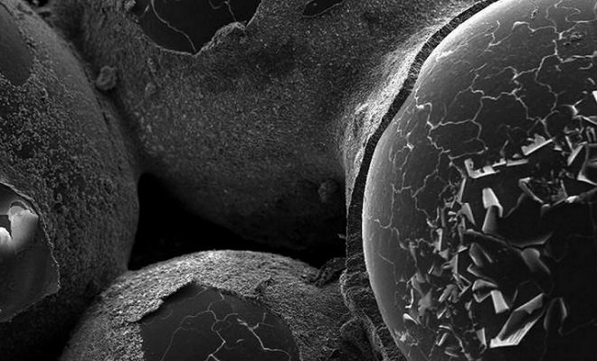 βιολογικά πλακίδια