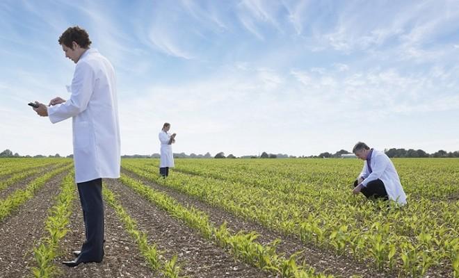 Μοριακή γεωργία