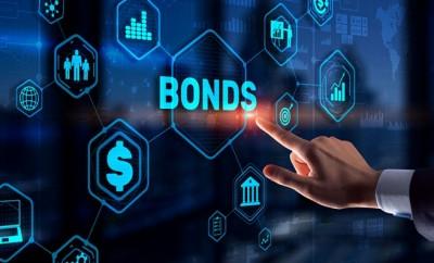 Digital inclusion bonds